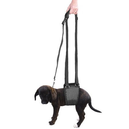 Dog Sling Lift, Support and Rehabilitation Padded K9 Hind Leg Underbelly Dog Harness for Injured, Weak, Old, or Arthitic Small Breed Dogs by CoreLife (Male / Female XS