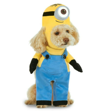 Halloween Minion Stuart Arms Pet Co Pet Costume](Minion Pet Costume)