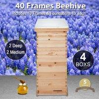 40-Frame Size Beekeeping Kit Bee Hive House Frame Beehive 20 Deep 20 Medium
