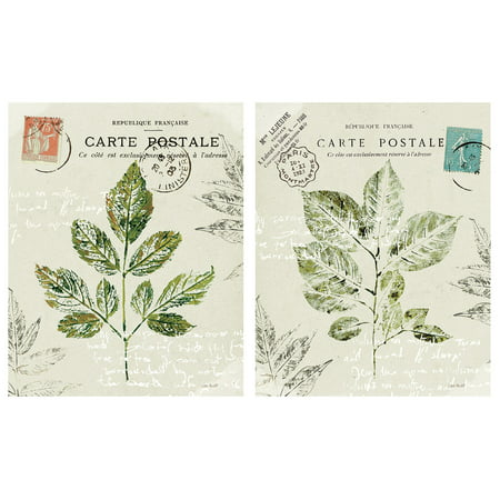 Classic Green French Carte Postale Botanical Plant Set by Lisa Audit; Two 11x14in Poster Prints