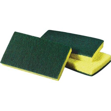 Scotch-Brite Medium Duty Scrub Sponge Green/Yellow (74) 491305