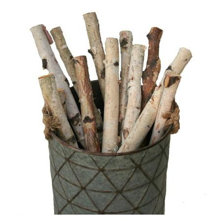 Birch logs 1