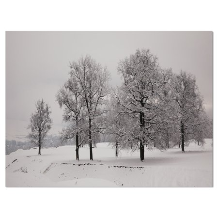 DESIGN ART Designart 'Oaks covered with snow in the countryside' Landscapes Photography on wrapped canvas - White
