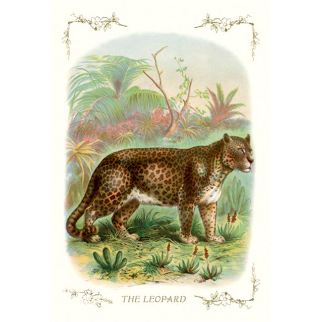 Buy Enlarge 0-587-11192-5P20x30 Leopard- Paper Size P20x30