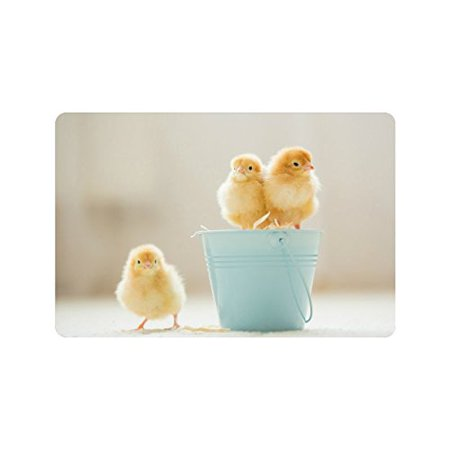 MKHERT Cute Baby Chicks Yellow Little Chicken Doormat Rug Home Decor Floor Mat Bath Mat 23.6x15.7 inch