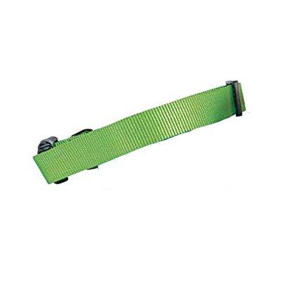 guardian gear nylon adjustable dog collar, fits necks 10 to 16, electric lime