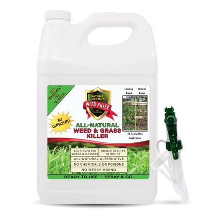 Half Gallon Concentrate - Natural Armor Weed & Grass Killer All-Natural Concentrated Formula. Contains No Glyphosate. 128-Ounce Gallon