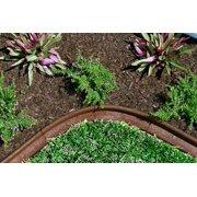 Ecoborder 24 ft No Dig Landscape / Garden  Border Edging (Brown) 48L x 3W x 3H in - Pack of 6