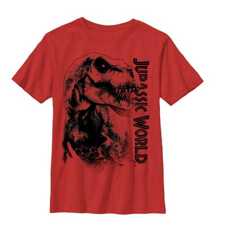 79e7574a Jurassic World - Jurassic World Boys' T. Rex Carnivore T-Shirt - Walmart.com