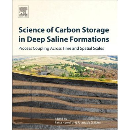 Science of Carbon Storage in Deep Saline Formations : Process Coupling Across Time and Spatial Scales