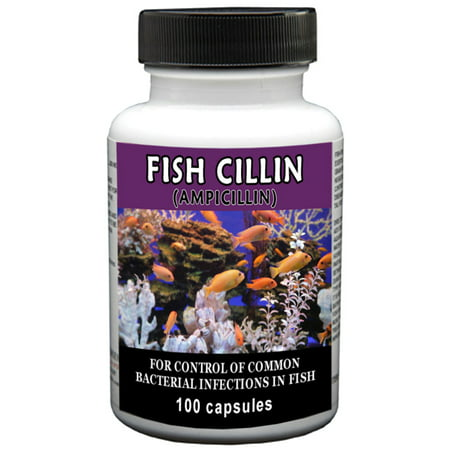 Thomas Labs Fish Cillin Fish Antibiotic Medication, 100