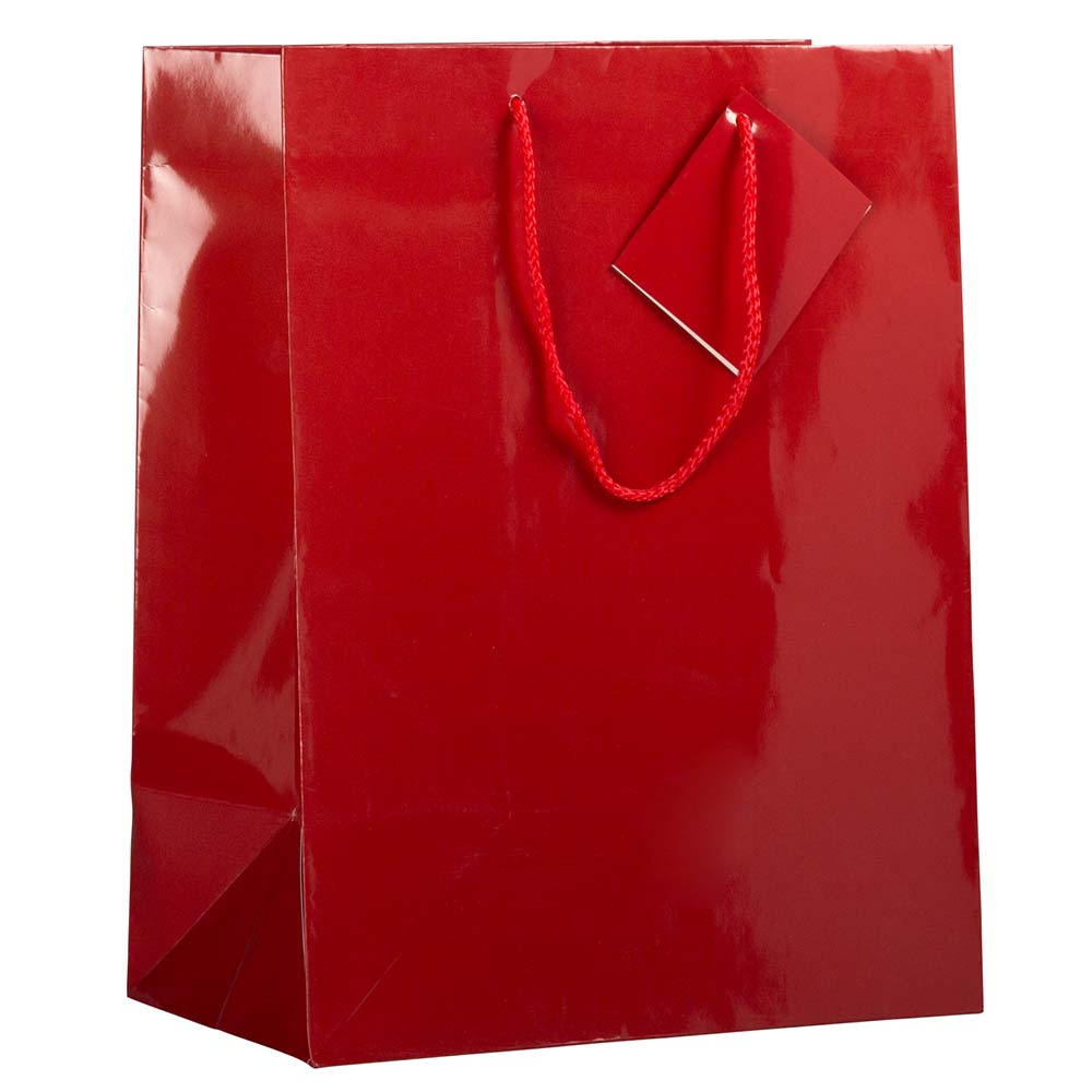 JAM Paper Glossy Gift Bags with Rope Handles, Large, 10 x 5 x 13, Red, 6 Bags/Pack