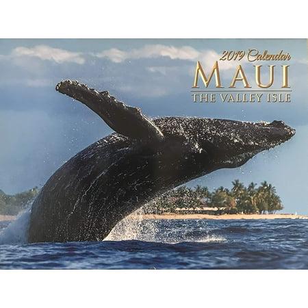 2019 Hawaii Wall Calendar