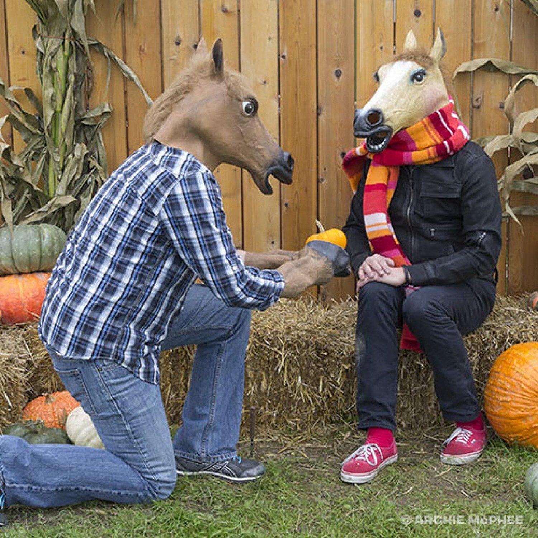 Image result for horse mask