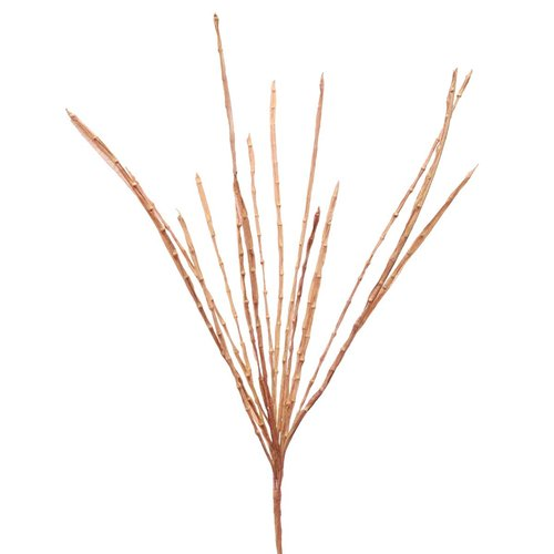 Gracie Oaks Wild Spray Desktop Grass (Set of 2)