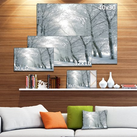 Winter Road Backlit my Morning Sun - Forest Canvas Art Print