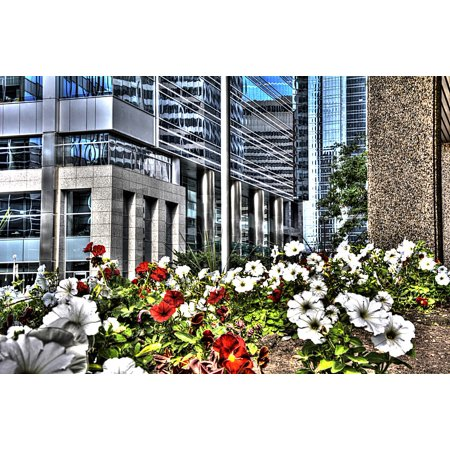 Canvas Print Alberta Flowers Calgary Canada Downtown City Stretched Canvas 10 x 14 ()