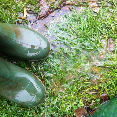 LAMINATED POSTER Nature Autumn Out Rain Boots Wet Rubber Boots Poster Print 24 x