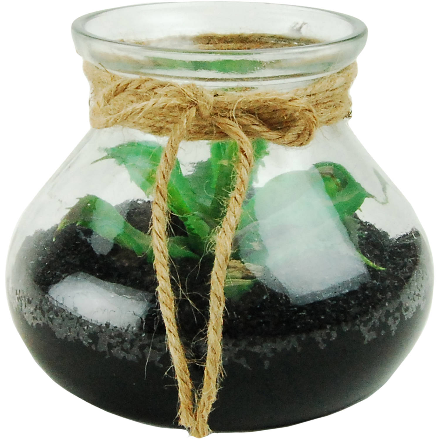 Succulents in a Glass Terrarium with Faux Dirt and Faux Water