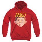 Mad Absolutely Mad Big Boys Pullover Hoodie
