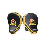 Cheerwing 2pcs New Target MMA Boxing Mitt Punch Pad Training Glove Karate Muay Thai Kick by Cheerwing
