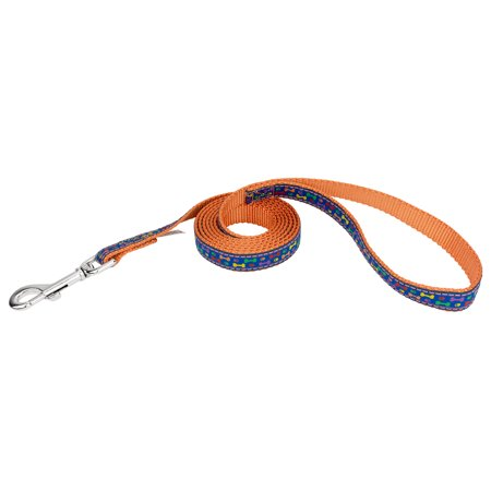 - Country Brook Design® 3/4 Inch Rainbow Paws and Bones Ribbon on Orange Dog Leash Limited Edition - 6 Foot