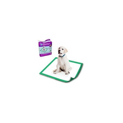 PoochPads Disposable Potty Pad (10 Pack), Small/18 x 18