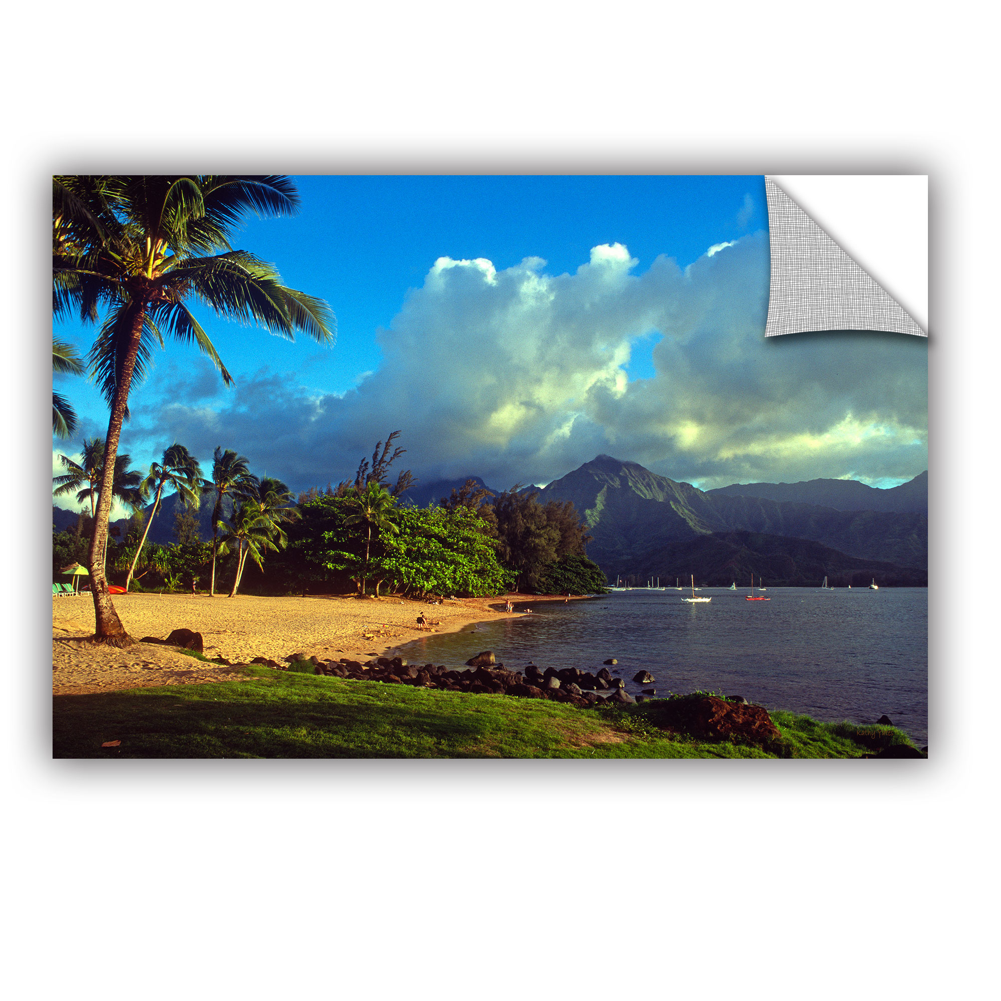 'Golden Light on Hanalei' Removable Wall Art Mural