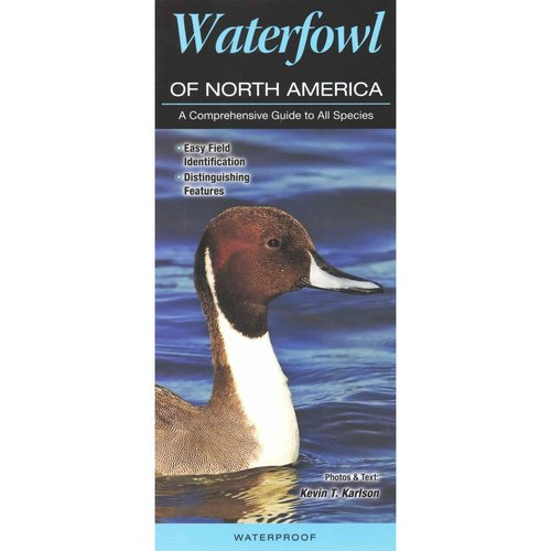 Waterfowl of North America: A Comprehensive Guide to All Species