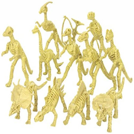 Assorted Dinosaur Fossil Skeleton 6-7