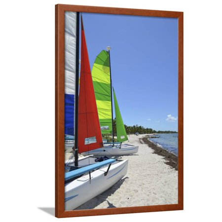 Small Catamarans on a Southeast Florida Beach Framed Print Wall Art By