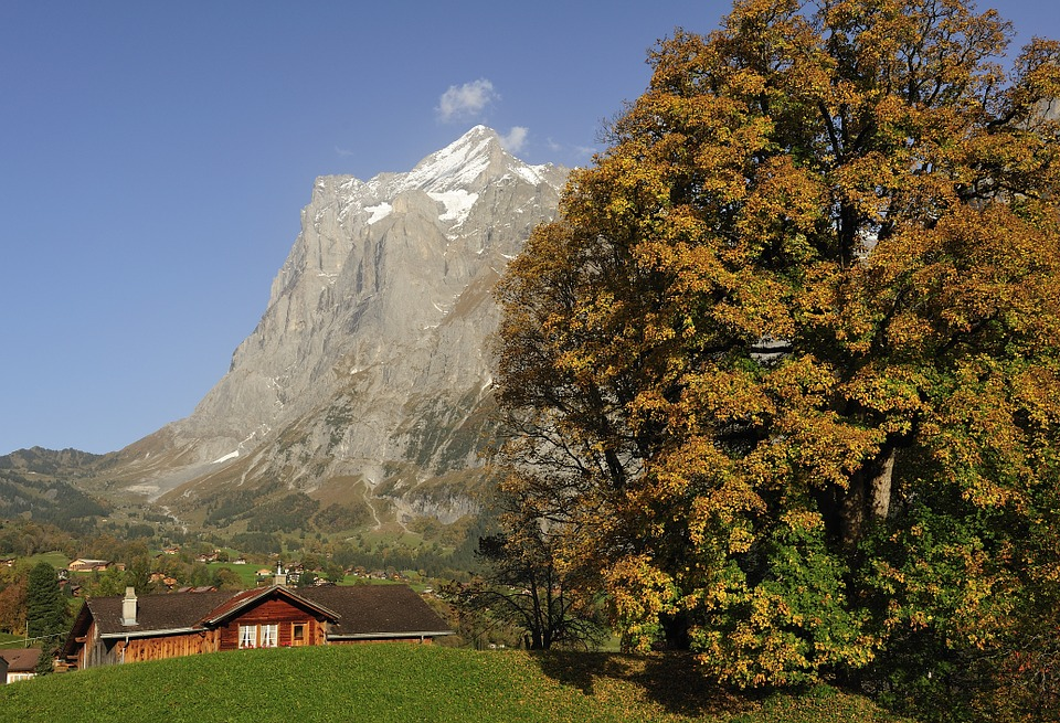 Click here to buy LAMINATED POSTER Farmhouse Grindelwald Autumn Farmhouses Poster Print 24 x 36.