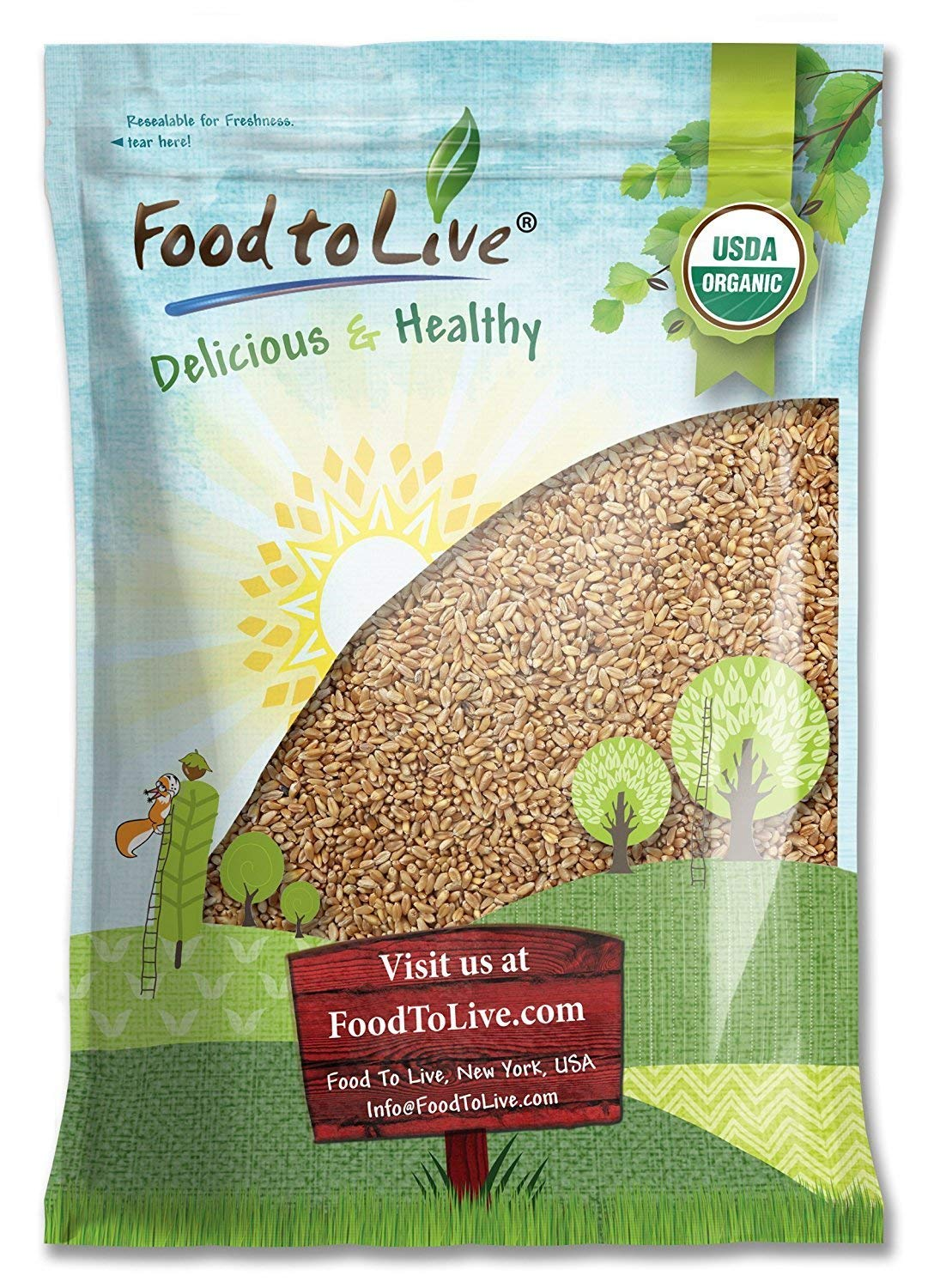 Organic Wheat Berries, 10 Pounds – Kosher, Raw, Sproutable, Vegan, Sodium and Sugar Free – by Food to Live