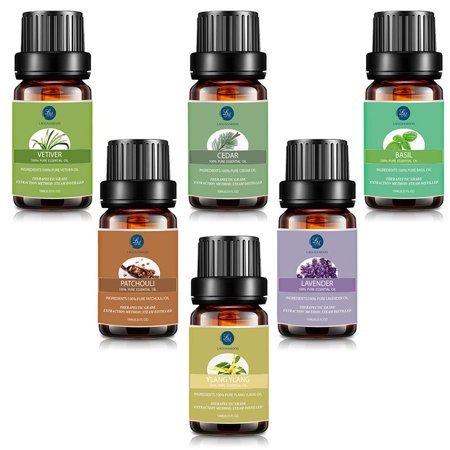 Lagunamoon Essential Oils Gift Set,Top 6 Premium Therapeutic Aromatherapy Oil Kit Blend For Focus And Concentration,10ML Vetiver,Cedar,Basil,Patchouli,Lavender,Ylang Ylang Fragrance For Personal Care