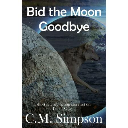 Bid the Moon Goodbye - eBook