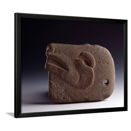 Zoomorphic Sculpted Stone Ax Representing the Head of a Deer Framed Print Wall Art ()
