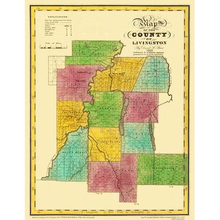 Old County Map   Livingston New York Landowner   Burr 1829   23 X 29 75