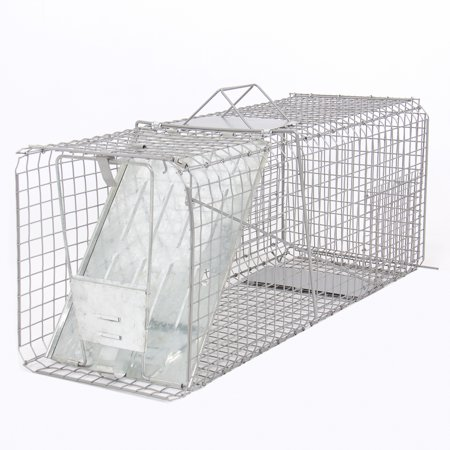 Raccoon Skunk Poss Humane Animal Trap 31 X12 X12  Cage Rabbit Cat Live