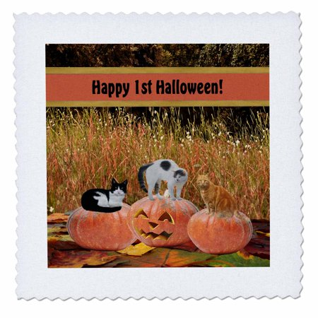 Happy Halloween Pumpkins White (3dRose Three Cats on Three Pumpkins, Happy First Halloween - Quilt Square, 6 by)