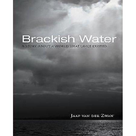 Brackish Water - image 1 of 1
