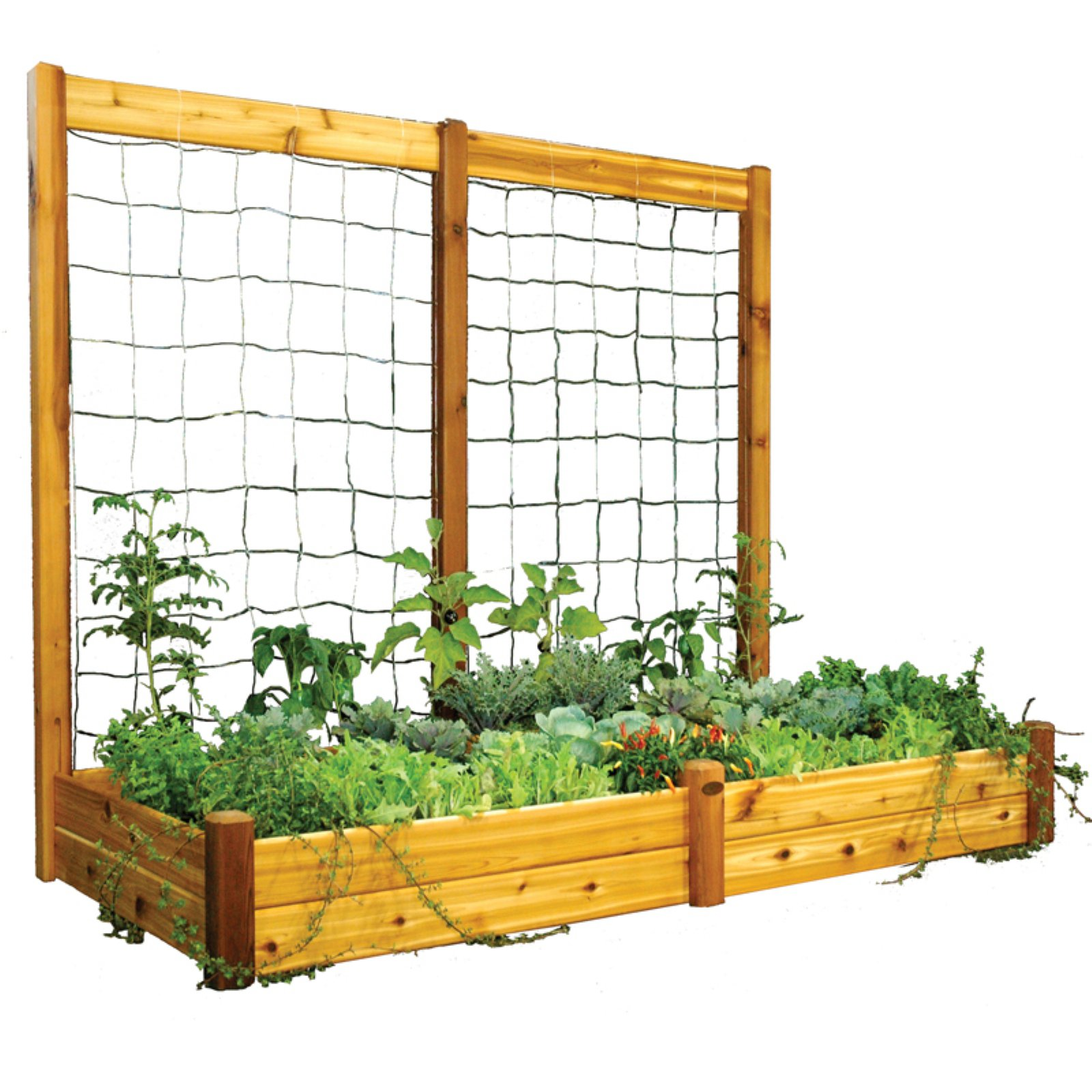 Gronomics 48L x 95W x 13H in. in. Raised Garden Bed with Trellis Kit
