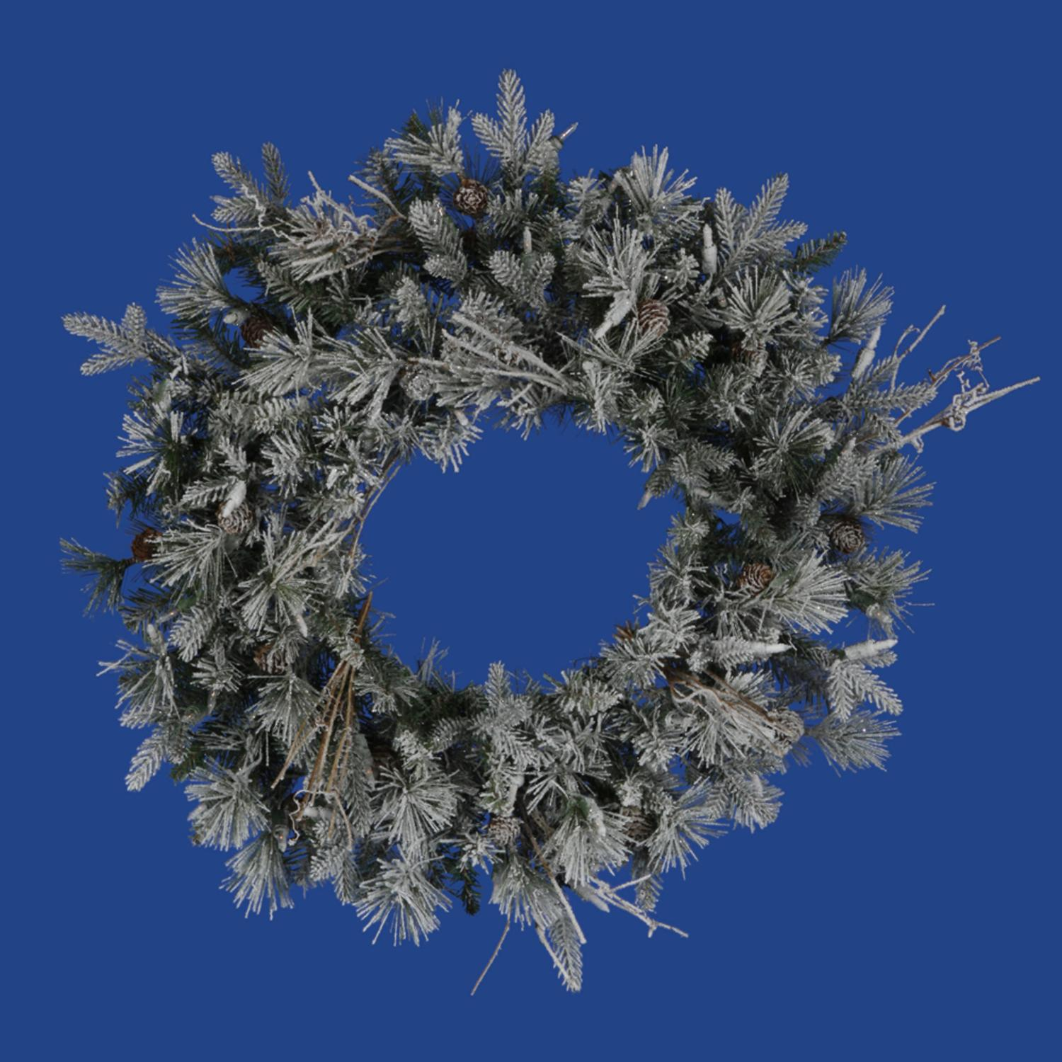 "24"" Frosted Wistler Fir Artificial Christmas Wreath - Unlit"