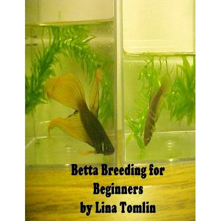 Betta Breeding for Beginners - eBook