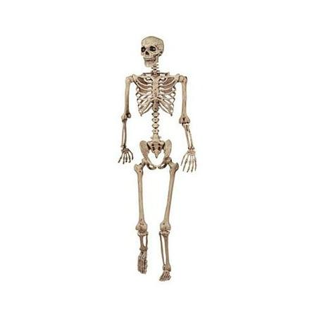 Posable Skeletons (Seasons (Hk) 18965 Posable Skeleton, 5-Ft. - Quantity)