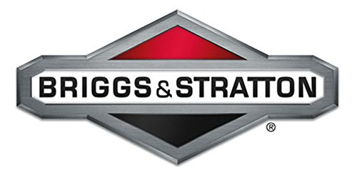 Briggs /& Stratton 825187 RING SET-STD OEM