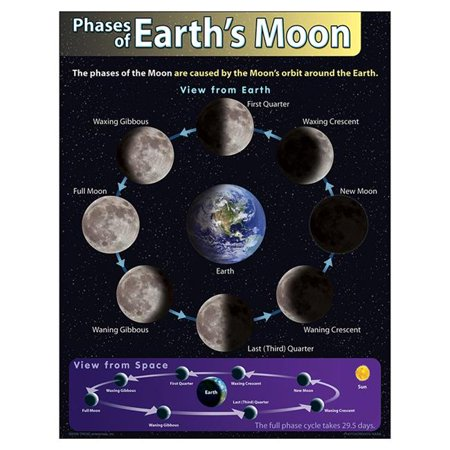 Trend Enterprises T-38292BN 17 x 22 in. 6 Piece Phases of Earths Moon Learning Chart - image 1 de 1