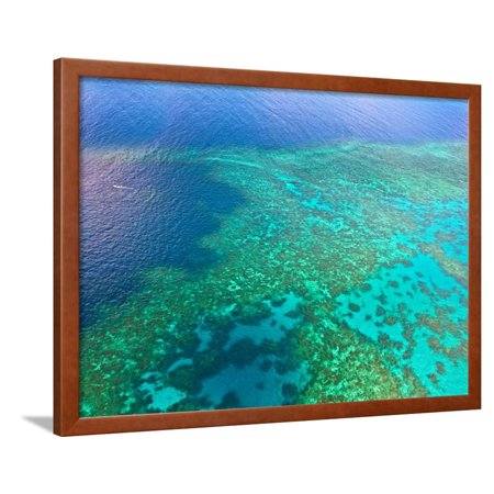 Aerial View of the Great Barrier Reef, Queensland, Australia Framed Print Wall Art By Miva Stock