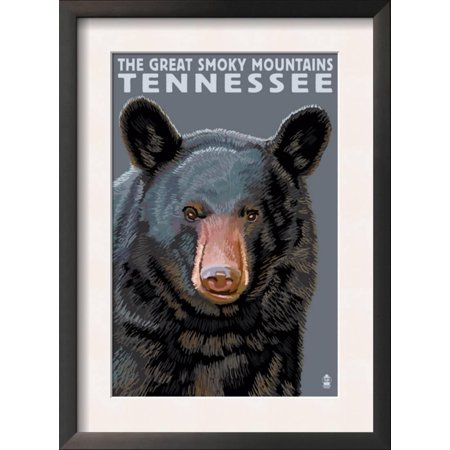 Great Smoky Mts. National Park, TN, Black Bear Up Close Framed Art ...