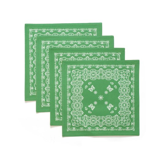 The Pioneer Woman Bandana Reversible Placemat, 4pk, Green