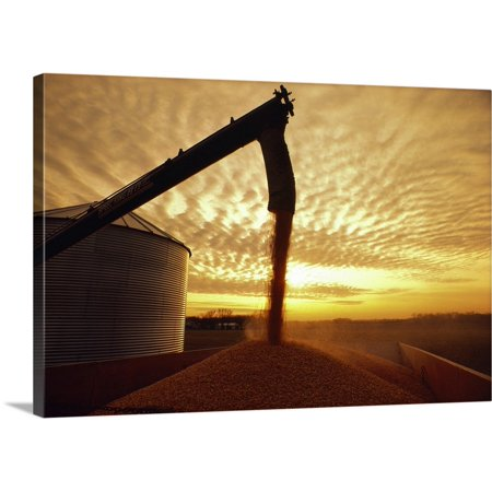 Great BIG Canvas | Premium Thick-Wrap Canvas entitled Harvested grain corn being augered from a grain (Grain Bin Augers)